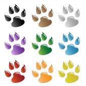 picture of paw-print  - Illustration animals paws print on a white background - JPG