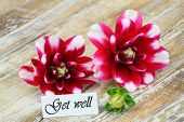 Get well card with dahlia flowers on wooden surface