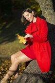 Woman At Park Sets Of Maple Leaves