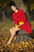 Woman At Autumn Park Hold Maple Leaves