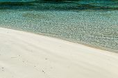 Nature Detail of Clear Water Meeting White Sand Beach, Seychelles