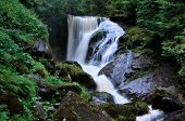 Upper Waterfall In Triberg