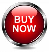 """buy now"" vector button"