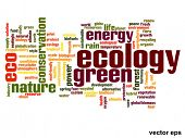 Vector eps concept or conceptual abstract green ecology and conservation word cloud text on white background