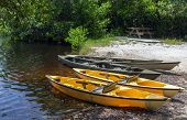 Kayaks For Paddling In Mangrove Tunnels In Everglades National Park, Florida, Usa