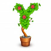 Isolated tree with flowers in clay pot. In the form of letter Y