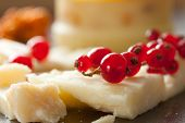 Cheese And Redcurrant