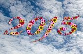 2015 Flowers On Festive On Beauty Peaceful Sky  Background