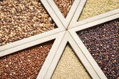 variety of gluten free grains (red and black quinoa, buckwheat, brown rive, amaranth and millet) in a wooden tray, focus on quinoa and amaranth