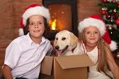 Happy kids with the best Christmas present - a newly received puppy dog