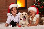 Kids with their pets at christmas time - enjoying the warmth of fireplace