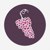 Hand-drawn grape ripe icon.