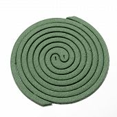 picture of mosquito repellent  - mosquito coil - JPG