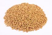 stock photo of fenugreek  - Pile of organic fenugreek - JPG