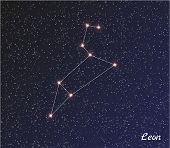 Constellation Leon