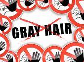 No Gray Hair
