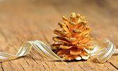 Christmas Tree Of Fir Cone