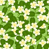 Seamless tropical pattern with stylized plumeria flowers.