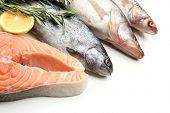 Fresh fish with lemon and rosemary, close-up