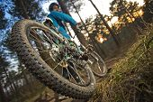 image of mountain chain  - The rear wheel of a mountain bike on an outdoor trail through the woods at sunset - JPG