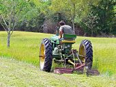 picture of plowed field  - man on a tractor cutting his grass