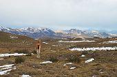 stock photo of lamas  - Guanaco  - JPG
