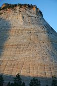 Checkerboard Mesa At Zion Canyon