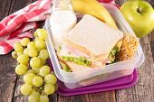 pic of lunch  - lunch box - JPG