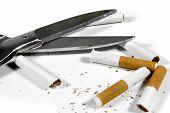 Cut Up Cigarettes