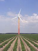 Modern Windmill 4
