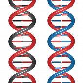 vector DNA sem costura
