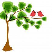 birds in love on the tree branch