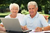 Senior couple surfing on internet