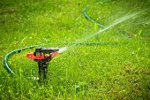 Closeup of Lawn Sprinkler mit Exemplar