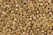 ungeröstetem Kaffee Textur