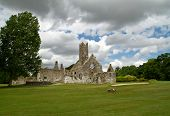 Adare Abbey in Ireland