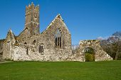 Abbey in Adare golf club - Ireland