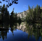 Tuolumne River Reflection