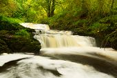 stock photo of irish moss  - Beautiful cascades of Clare Glens - JPG