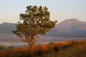 Dawn in Swaziland