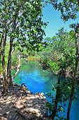 Cenote Escondido, Tulum, Mexico