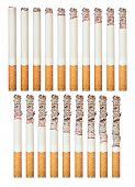 Montage of a burning cigarette in different stages, isolated on white.