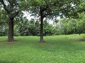 foto of kensington  - The Kensington Gardens and Hide Park - JPG