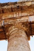 Column of the Segesta temple in Sicily