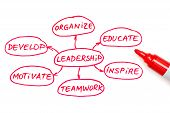 stock photo of role model  - Leadership flow chart written with red marker on white board - JPG