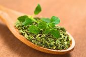 image of oregano  - Dried oregano leaves on wooden spoon with a fresh oregano sprig on top  - JPG