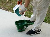 picture of spreader  - A man pours grass seed coated with a fungicide and insecticide into a hand - JPG