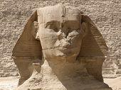 Frontal Sphinx Detail