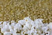 Fluffy, White Popcorn And Corn Kernels poster
