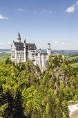 Neuschwanstein Castle Above The Forest